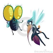 2016.05.04 moustiques mouches 2