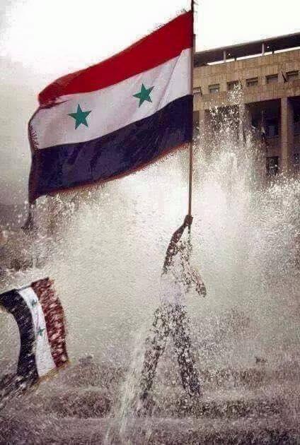 2016.08.13 drapeau syrien 13876185_1529407697085282_731719081520245812_n
