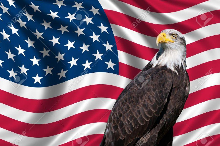 2017.05.20 19193645-Symbole-patriotique-montrant-le-drapeau-am-ricain-avec-un-pygargue-t-te-blanche-Banque-d'images