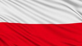 blason bandeira-polonesa-36142432