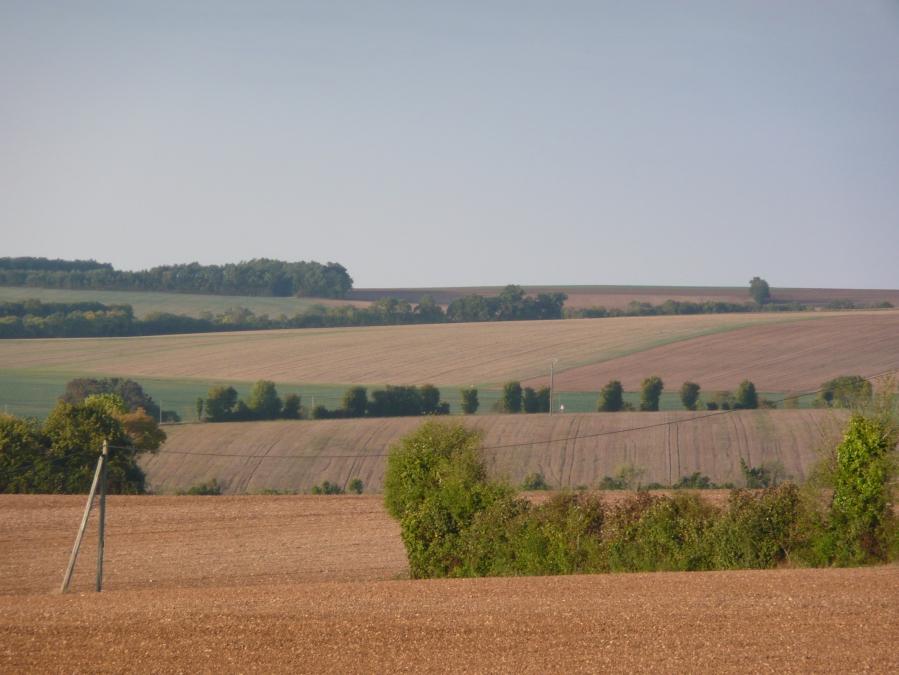 131 paysage D120 vers Benâtes 02.10.10-18h58