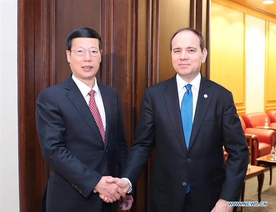 La Chine et l'Albanie conviennent d'élargir la coopération dans le cadre de -la Ceinture et la Route- et du mécanisme 16plus1-2017041809141335676
