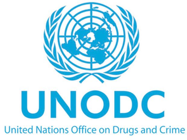 UNODC 9645300-15523778