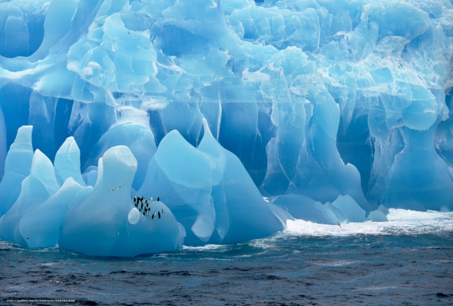 Icebergs in the Weddell Sea