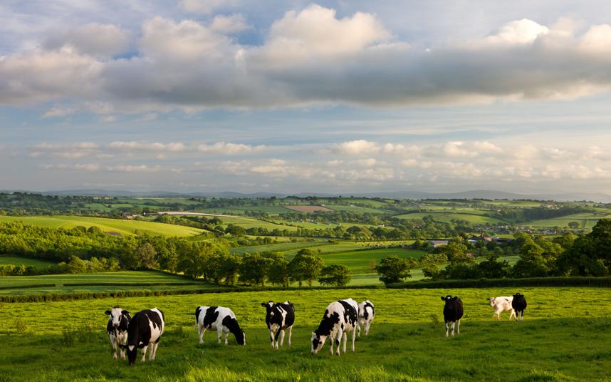 AGRICULTURE britain-farming_3207686k