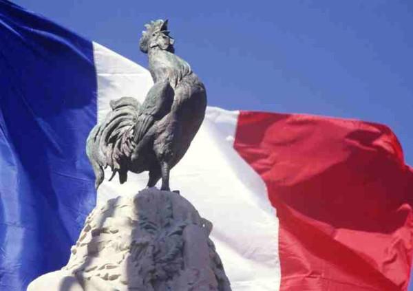 FRANCE 2017.05.14 coq1