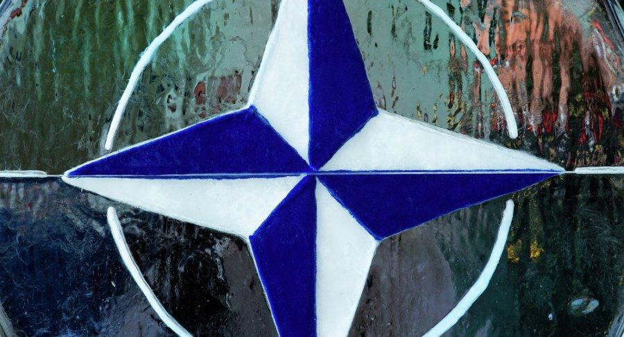 OTAN 1017925552