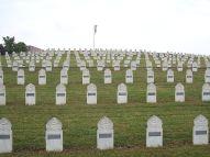 CIMETIERE MILITAIRE MORT EN FRANCE ALSACE 800px-Cimetiere_militaire_Sigolsheim_VTdJ