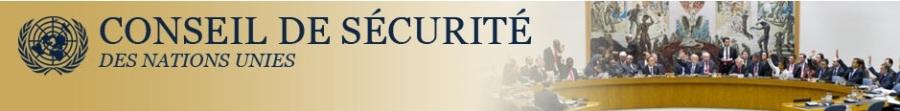 ONU bandeau-conseil-sécurité-nations-unies