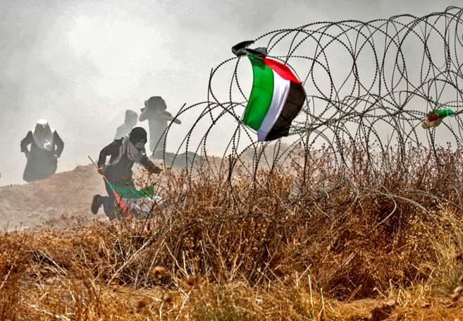 PALESTINE Force excessive à Gaza - une violation révoltante du droit international gettyimages-958393640