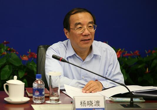 chine Yang Xiaodu 572d2ff210fb4998942cc1bf97b35632