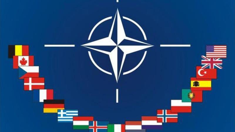 OTAN 4bk73f0af7ef8fa0fa_800C450
