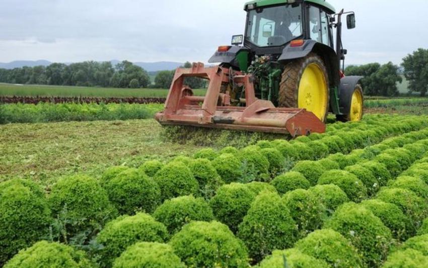 suisse agricole agricutlruee_suisse