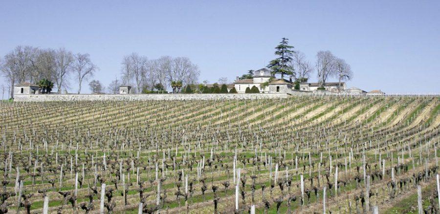 FRANCE A Bordeaux, 10 châteaux viticoles chinois saisis par la justiceGrand-jour-haichang-lemaire-hebdo-vin-chine-960x468