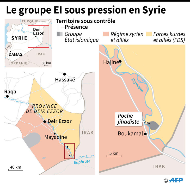 SYRIE Carte-representant-zones-controle-Syrie-8-fevrier 2019 _0_729_707