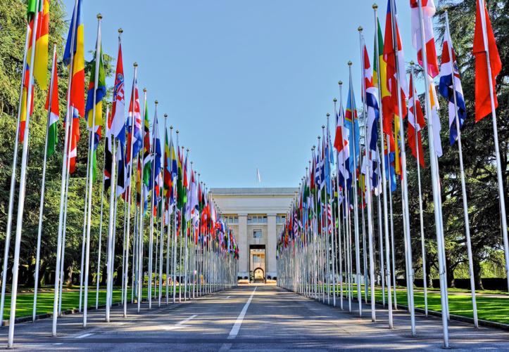 ONU l'Office des Nations Unies à Genève, l'ONU, Palais des Nations, Genève6230993-9309776