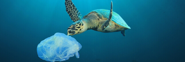 pollution-oceans-shutterstock_1065042626