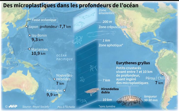 POLLUTION PLASTIQUE microplastiques-profondeurs-ocean_2_729_455
