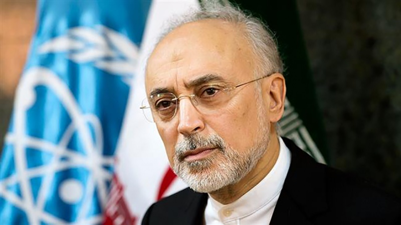 IRAN Head of the Atomic Energy Organization of Iran Ali Akbar Salehi 4bpo2bbae94e9613lrf_800C450