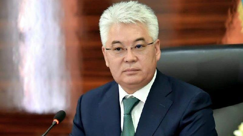 Nursultan Nazarbayev, le président du Kazakhstan  kazakstan-beibut-atamkulov-800x450.jpg