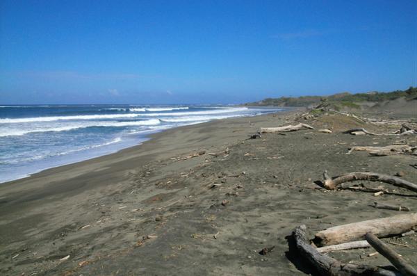 plage de sable noir file-20190819-123736-2lj1pv