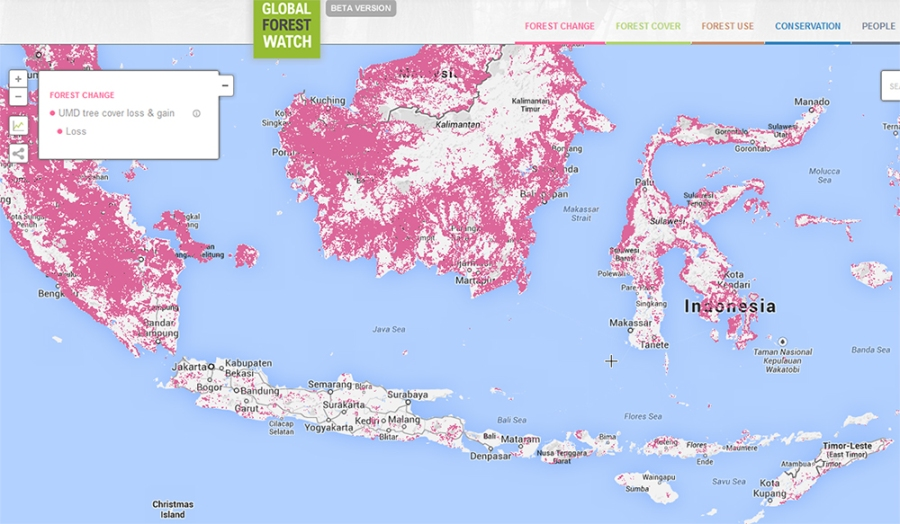 carte-indonesie-deforestation-foret-01