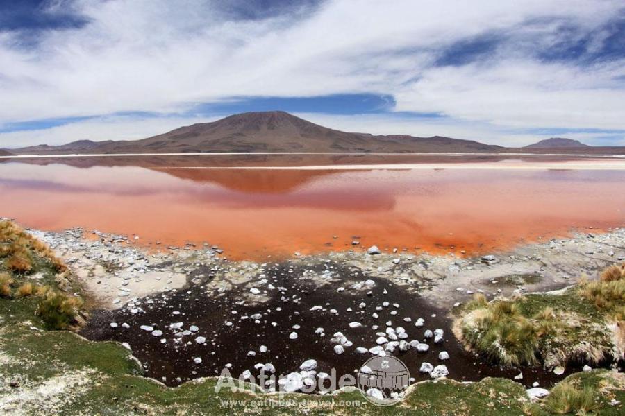 laguna-colorada-lac-colore--2-960