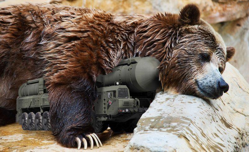 ob_65eb5d_russia-bear