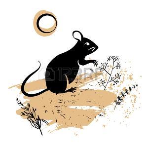 94991506-rat-sauvage-image-conceptuelle-du-symbole-chinois-bonne-année-2020-sur-fond-clair-petite-souris-noire-