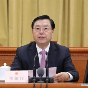 le Président du Comité permanent de l'APN Li Zhanshu unnamed