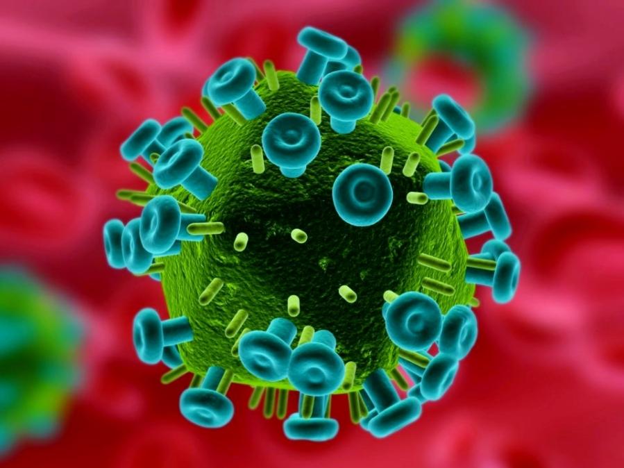 the-hiv-virus