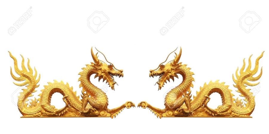 CHINE10384329-dragon-d-or-sur-fond-blanc