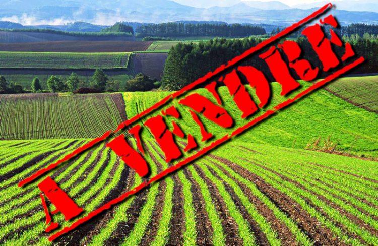 terres-a-vendre-ukraine-e1564593737139