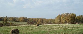 330px-Chulkovo_Selsovet_NNov_View_9853