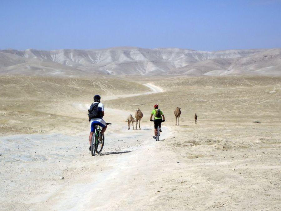 palestine-le-sentier-d-abraham-en-vtt-nicolas-eibner_00000109967qfkqb0wke_l