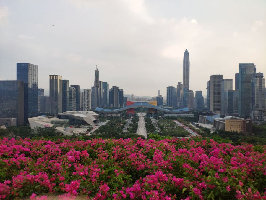Shenzhen est devenue une des villes les plus intéressantes de Chine shenzhen-4