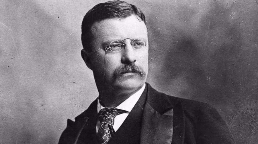 Teddy-Roosevelt-and-trust-busting