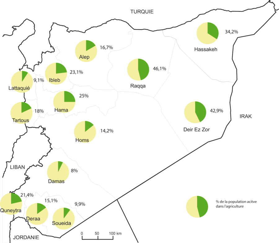 img-4 La population active dans l'agriculture par muhafaza en 2004 syrie