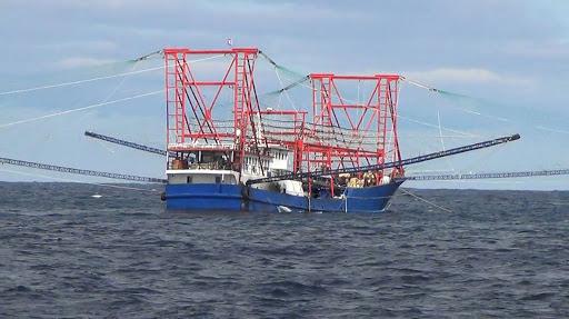 navires de pêche chinois