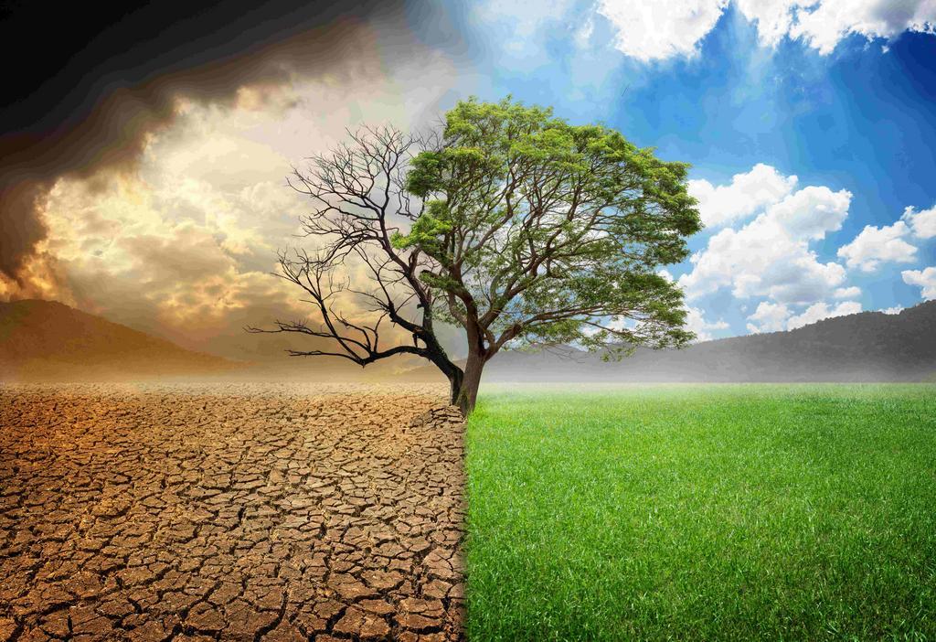 csm_Klimawandel2_a1789a0730