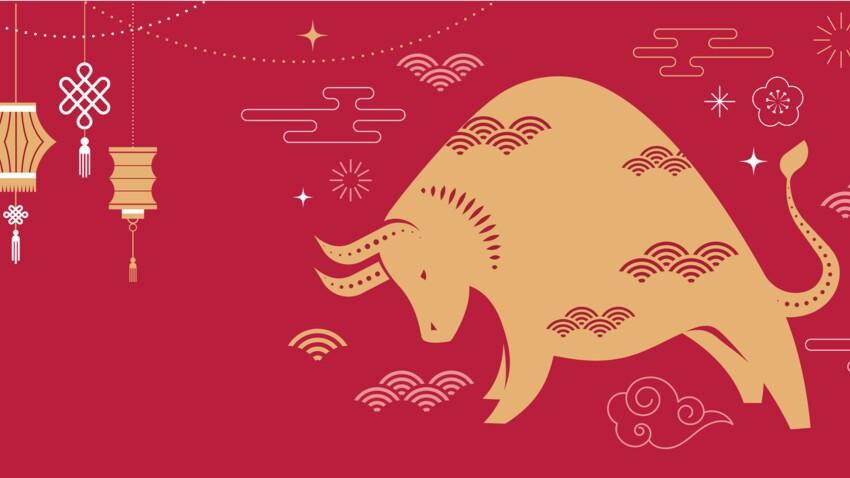 horoscope-chinois-du-mois-de-janvier-2021-quelle-est-l-influence-du-boeuf-de-terre