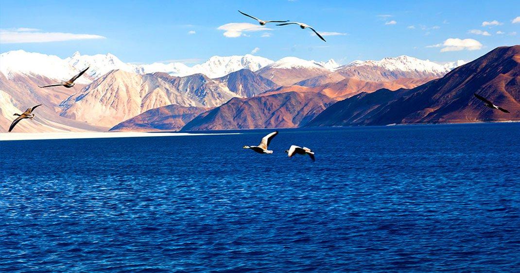 Lac-Pangong-Tso-1-1