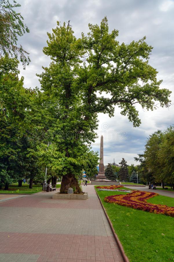 arbre-de-peuplier-commémoratif-sur-la-place-des-combattants-tombés-volgograd-81224360