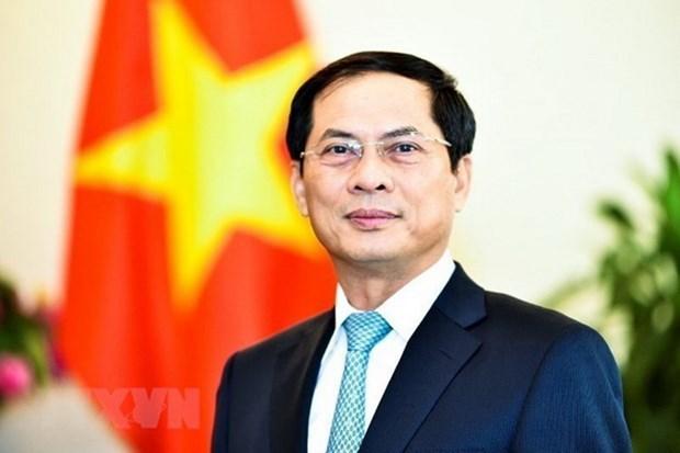 Le vice-ministre permanent des Affaires étrangères Bui Thanh Son. Photo VNA