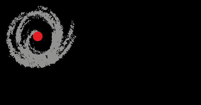 Logo-IREX_HorizontalBaseLine_Pt
